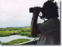 Birds of Bonaire - Man birding on Bonaire - Bonaire birds and birding